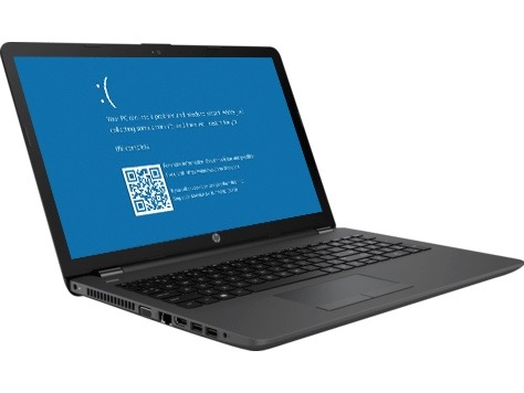 HP Laptop blue screen error repair service Dallas